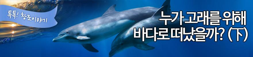누가 고래를 위해 바다로 떠났을까? (하)